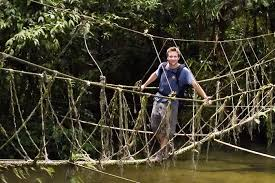 monkey-bridge project